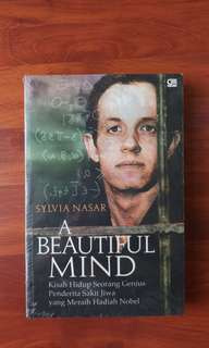 A Beautiful Mind (Terjemahan)