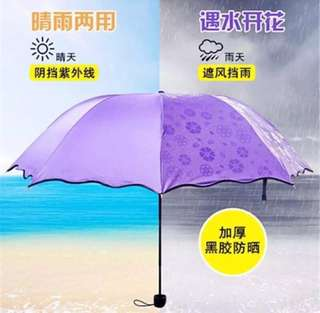 Magic Umbrella for sale, brand new, Black Backing, 4-Folds