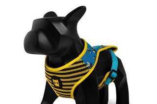 Zee Dog buzz air mesh plus dog harness