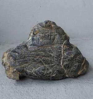 🚚 台灣山形黑膽石