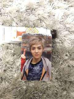 Luhan photocard growl