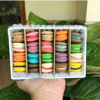 Special baby macaron isi 20