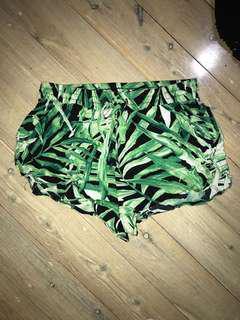 Palm tree mini shorts
