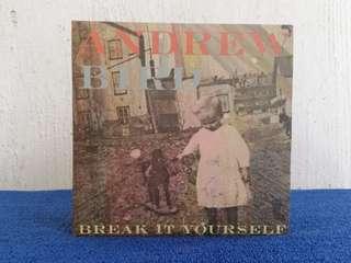 Andrew Bird-Break It Yourself