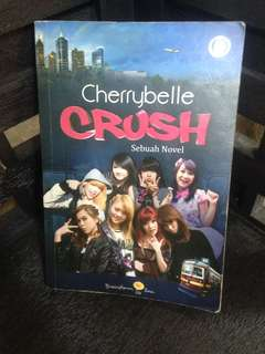 Cherrybelle Crush Novel