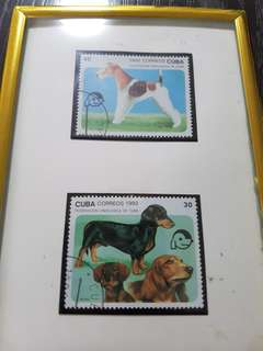 Dog champion collectible stamp cuba