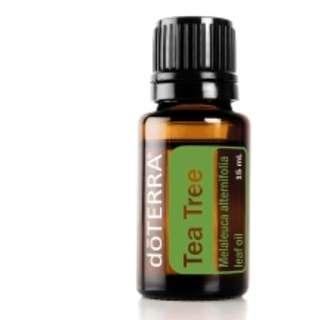 doTERRA Tea Tree (Melaleuca) Essential Oil