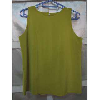 Apple Green Sleeveless Top