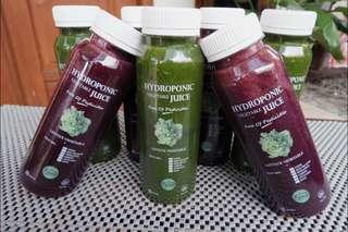 Jus Sayur Buah Hidroponik