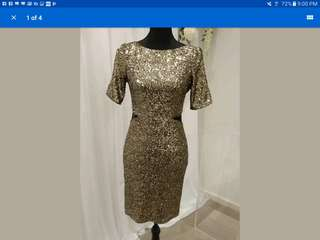 Bariano sequin dress