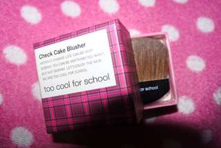 Too Cool For School Check Cake Blush