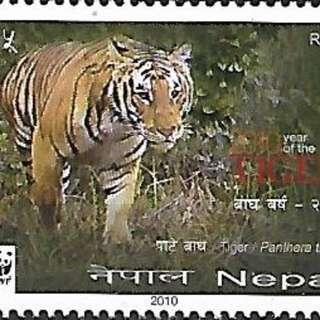 尼泊爾2010中國生肖庚寅虎年熊貓徽WWF1全新-