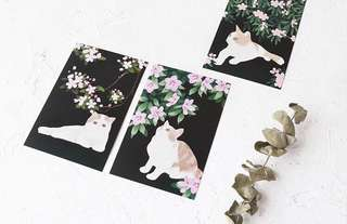 (PO) Cats Amongst the Flowers Postcards/ Post Cards