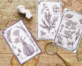 (PO) Floral Encyclopedia Postcards/ Post Cards