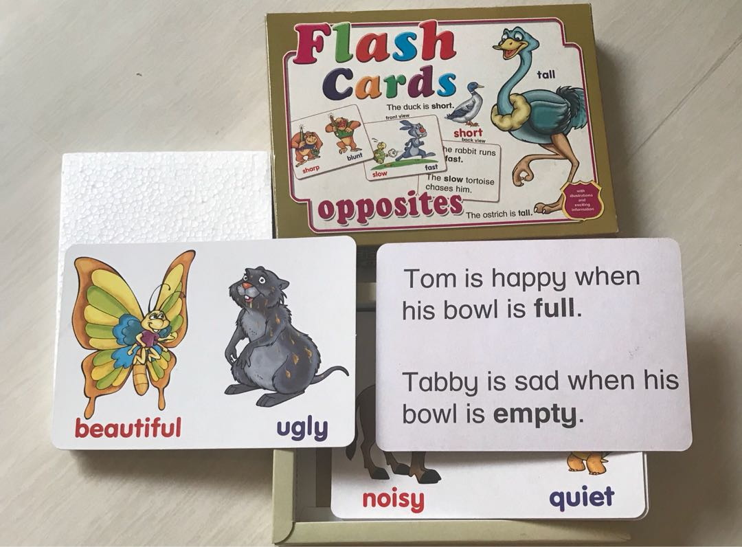 Flash Cards For Children Books Stationery Childrens On Giant Flashcard Animals Carousell