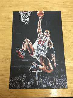 Dennis Rodman the worm chicago bulls 公牛 nba postcard 油畫 收藏卡 籃球 basketball