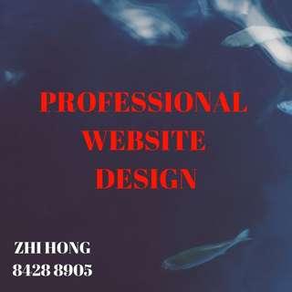 Professional E-Commerce Website Design