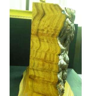 B024 牛樟樹瘤根 長50寬21高38cm (3)