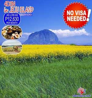 Travel Less - Korea Jeju Island
