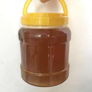 ❗️最後2瓶❗️蜜糖🐝蜂蜜🍯Honey🐝深生天然百花蜜