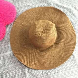 Brown Huge Summer Hat