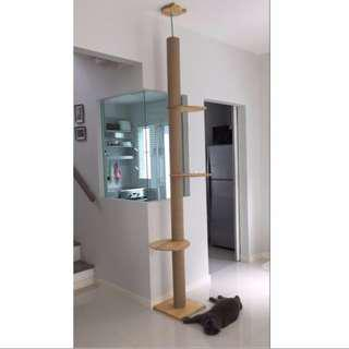 🚚 In stock Solid Pine Wood Cat Ceiling High Tree Climbing Post Condo