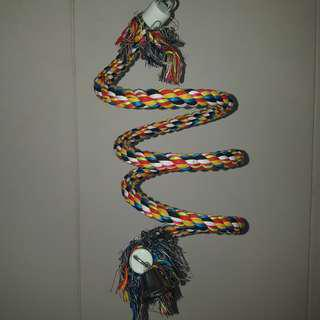 PT11 Parrot Spiral rope ( FREE Delivery )