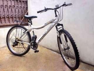 Raleigh Senior Bicycle