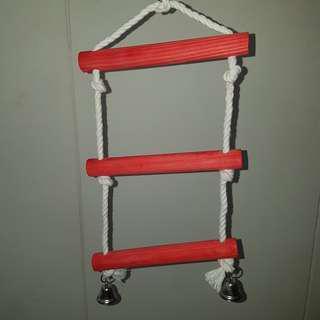 PT17 Parrot swinging ladder ( FREE Delivery )