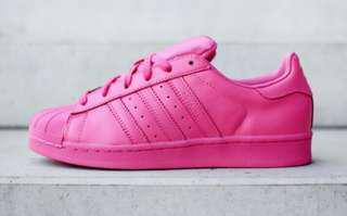 Adidas pharel william full color