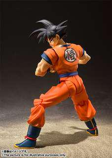 LOOKING FOR THIS SHF GOKU