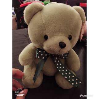 🚚 抹茶色泰迪熊❤️