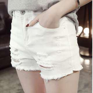 PLUS SIZE SHORTS (UP TO 5XL)