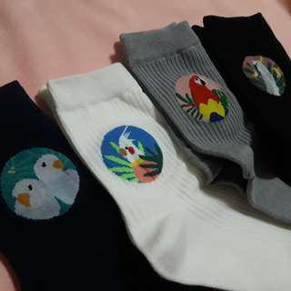 Bird Socks 3 for 160