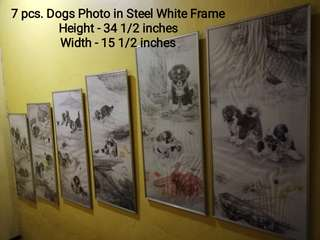 Dogs Photo in Steel White Frame