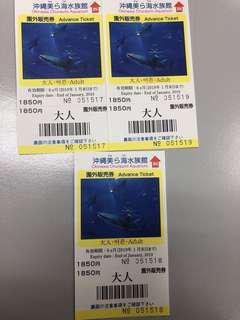 Okinawa Churaumi Aquarium Ticket