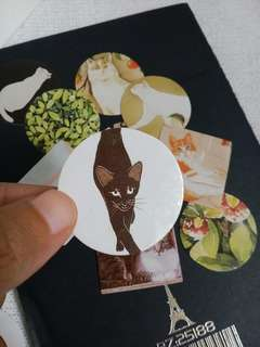 Cat paper stickers