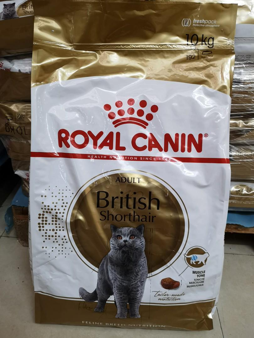 Royal Canin 10kg British shorthair 英短貓
