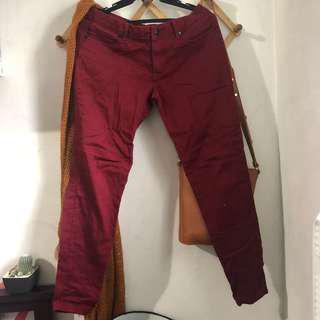 Maroon Chino Pants