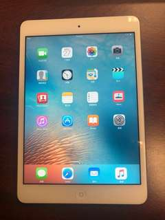 iPad mini 98% New