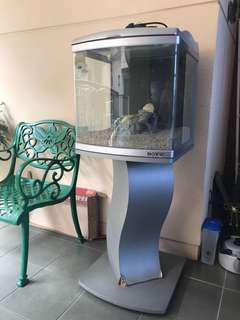 Fish Tank with Lights, Ornaments & Sand Including