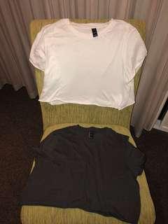 Factorie Crop T-Shirts x2 (Size M)