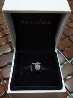Pandora 潘朵拉 二手 相機串飾