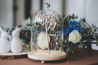 🚚 Bell Jar with Light Wood Base - Price reduced