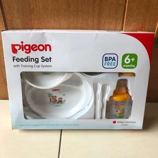 NEW - Pigeon Feeding Set with Training Cup 6+