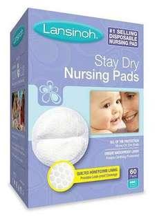 Lansinoh Stay Dry Nursing Pads Medium 60s Disposable