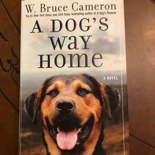 A Dog Home Hard Cover- Bruce W Camwron