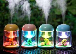 Micro Landscape Humidifier
