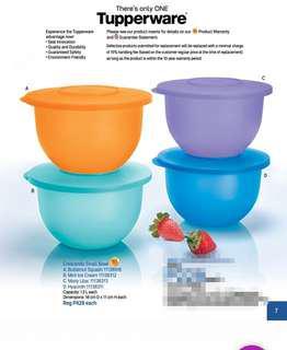 Tupperware Small Crescendo Bowl