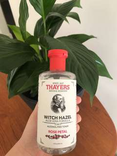 Thayers witch hazel rose petal 🌹